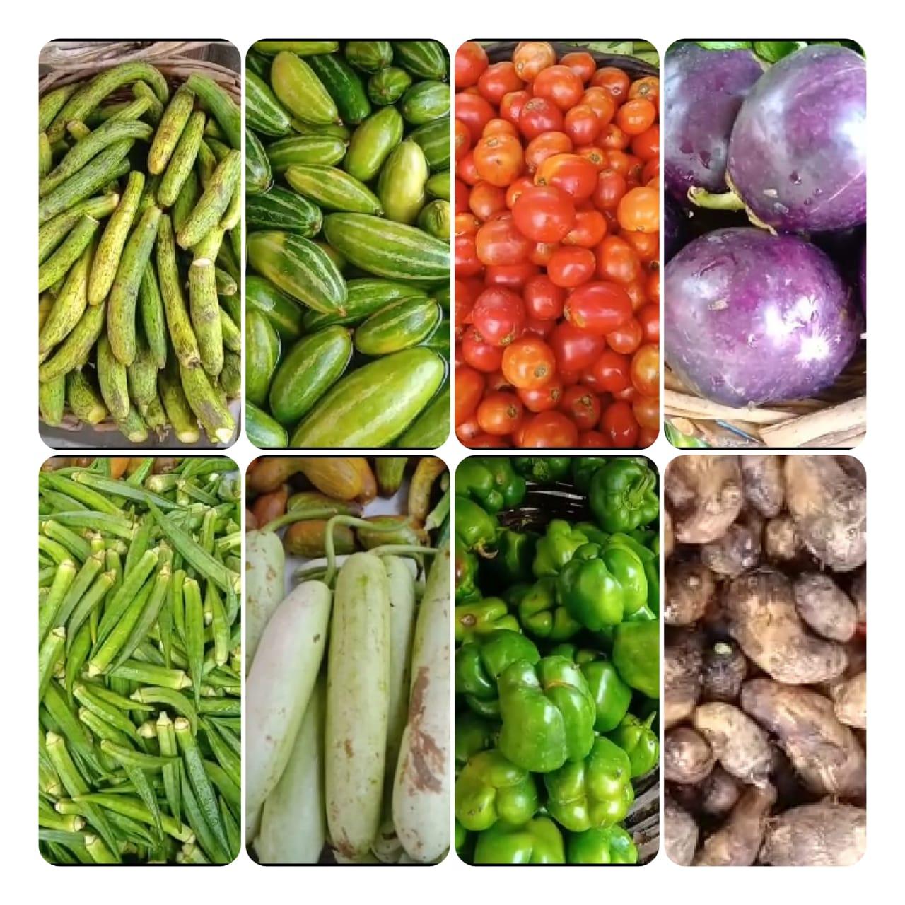 एक सप्ताह के दौरान सब्जियों के दामों में जबरदस्त बढ़ोतरी देखने को मिली सभी सब्जियों के दाम लगभग दुगने हो गए